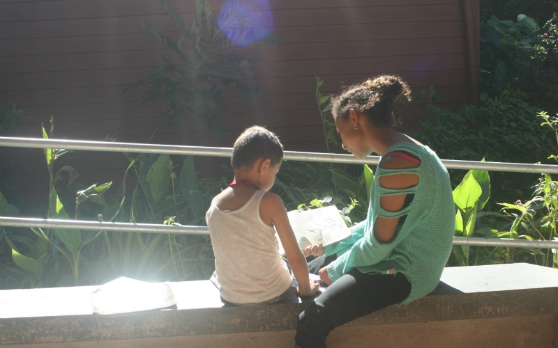 Studying at Monteverde Friends School